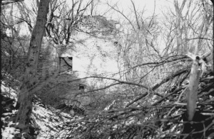 Millwood Mill 1954