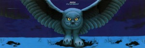 flybynight-1