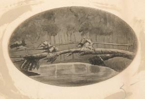 Playter's Bridge